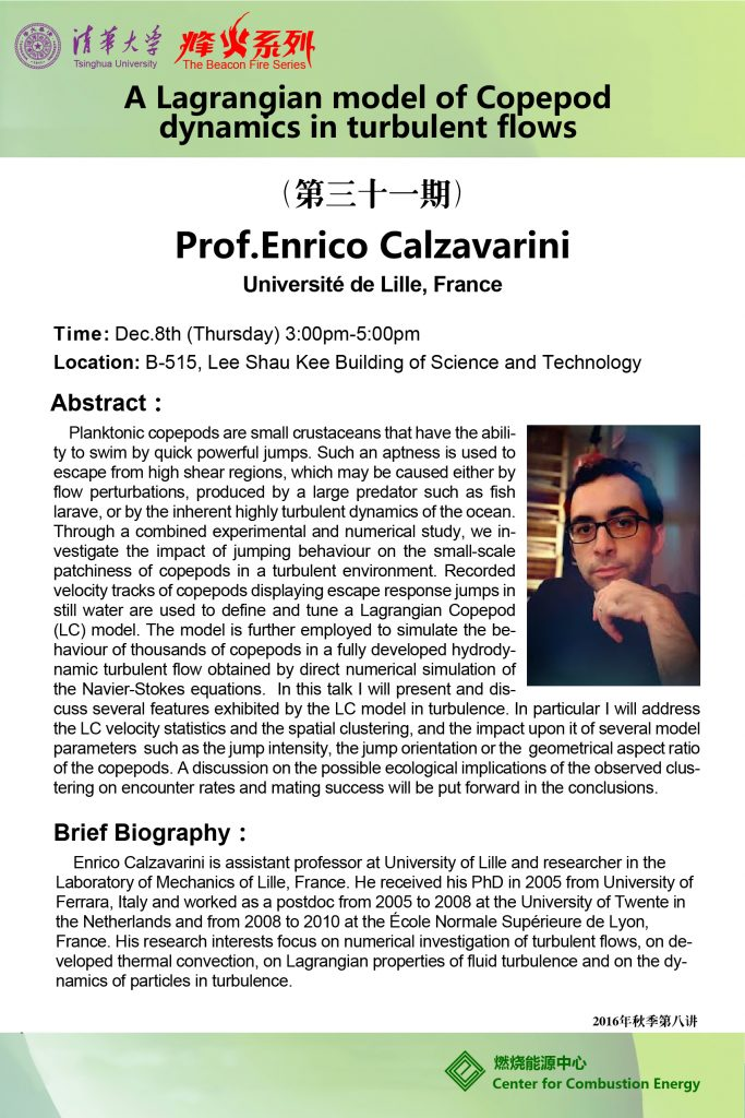 enrico-calzavarini-poster